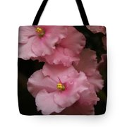 Pink Slippers Tote Bag