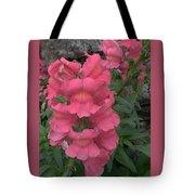 Pink Snapdragons Tote Bag