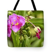 Pink Spiderwort Drip Drops Tote Bag