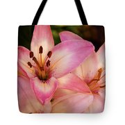 Pink Spring Lilly Tote Bag