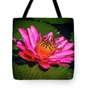 Pink Summer Water Lily Tote Bag