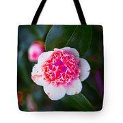 Pink Tenderness Tote Bag
