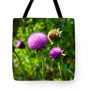 Pink Thistle Study 1 Tote Bag