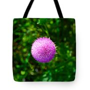 Pink Thistle Study 2 Tote Bag
