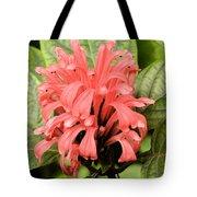 Pink Trendles Tote Bag