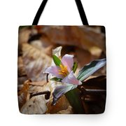 Pink Trillium In Lost Valley Tote Bag