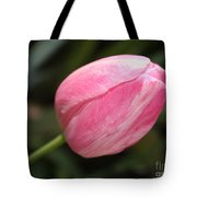 Pink Tulip Closeup Tote Bag