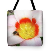Pink Tulip Flower Orange Art Prints Honey Bee Baslee Troutman Tote Bag