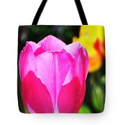 Pink Tulip In Sunlight Tote Bag