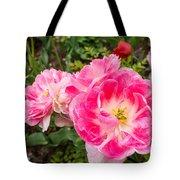 Pink Tulip, Keukenhof Tote Bag