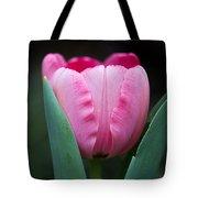 Pink Tulip Panoramic Tote Bag