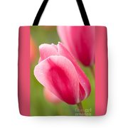 Pink Tulips 3 Tote Bag
