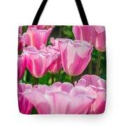 Pink Tulips Aglow Tote Bag