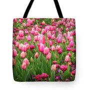 Pink Tulips At Floriade In Canberra, Australia Tote Bag