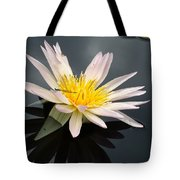 Pink Water Lily With Dragonfly Tote Bag