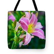 Pink White And Yellow Day Lily Tote Bag