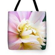 Pink White Dahlia Flower Soft Pastels Art Print Canvas Baslee Troutman Tote Bag