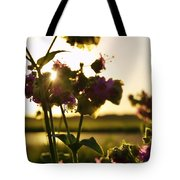 Pink Wildflower Sunset I Tote Bag
