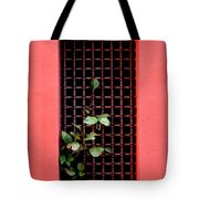 Pink Window In Cartegena Tote Bag