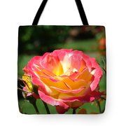 Pink Yellow Roses 3 Summer Rose Garden Giclee Art Prints Baslee Troutman Tote Bag