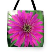 Pink Zinnia In Florida Tote Bag
