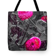 Pink Zinnias Against Grey Background Tote Bag