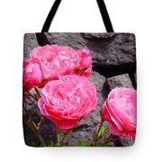 Pinks On The Rocks Tote Bag