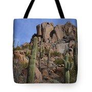 Pinnacle Peak Landscape Tote Bag