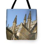 Pinnacles Tote Bag