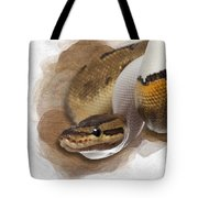 Pinstripe Pied Royal Python 01 Tote Bag