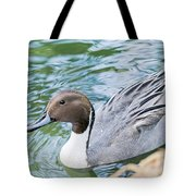 Pintail Portrait Tote Bag