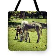 Pinto Donkey I Tote Bag