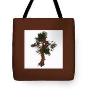 Pinus Aristata Tree Tote Bag