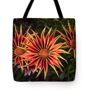 Pinwheels Tote Bag