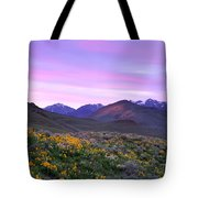 Pioneer Mountain Sunset Tote Bag