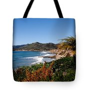 Pismo Beach California Tote Bag