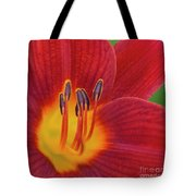 Pistil, The Female Reproductive Part Of A Flower Tote Bag