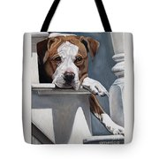 Pitbull Stare Tote Bag