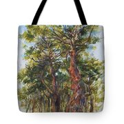 Pitch Pines, Cape Cod Tote Bag