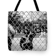 Pitchers And Catchers Tote Bag
