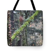 Pittock Pitch Tote Bag