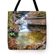Pixley Falls State Park Lesser Falls Tote Bag
