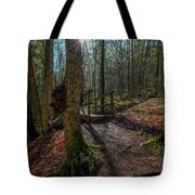 Pixley Park Boonville New York Tote Bag