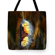 Pizzazz Tote Bag
