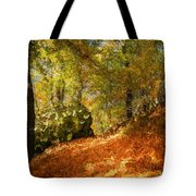 Place Of Power Tote Bag
