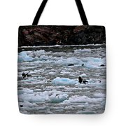 Placental Feed Tote Bag