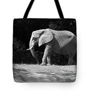 Placid Pachyderm Tote Bag