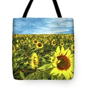 Plains Sunflowers Tote Bag by Scott Cordell