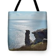 Planet Earth Is Blue  Tote Bag