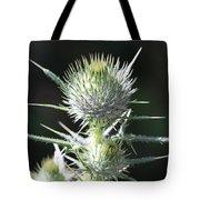 Plant 09-01-18 Tote Bag